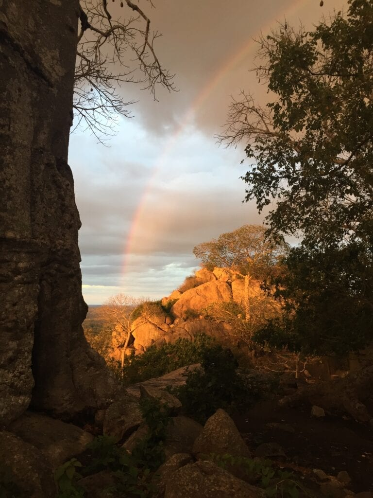 Nyama tika Baobab Rainbow IMG_5684